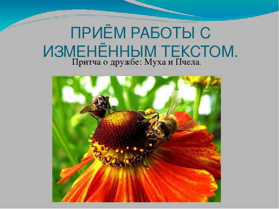 ПРИЁМ РАБОТЫ С ИЗМЕНЁННЫМ ТЕКСТОМ. Притча о дружбе: Муха и Пчела.