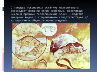 С помощью ископаемых остатков палеонтологи воссоздают внешний облик животных,