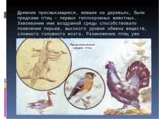 Древние пресмыкающиеся, жившие на деревьях, были предками птиц – первых тепло