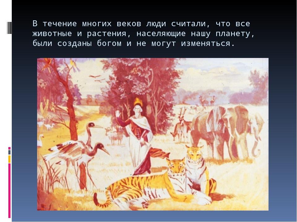 В течение многих веков люди считали, что все животные и растения, населяющие...