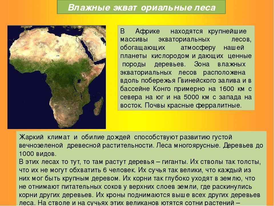 В Африке находятся крупнейшие массивы экваториальных лесов, обогащающих атмос...