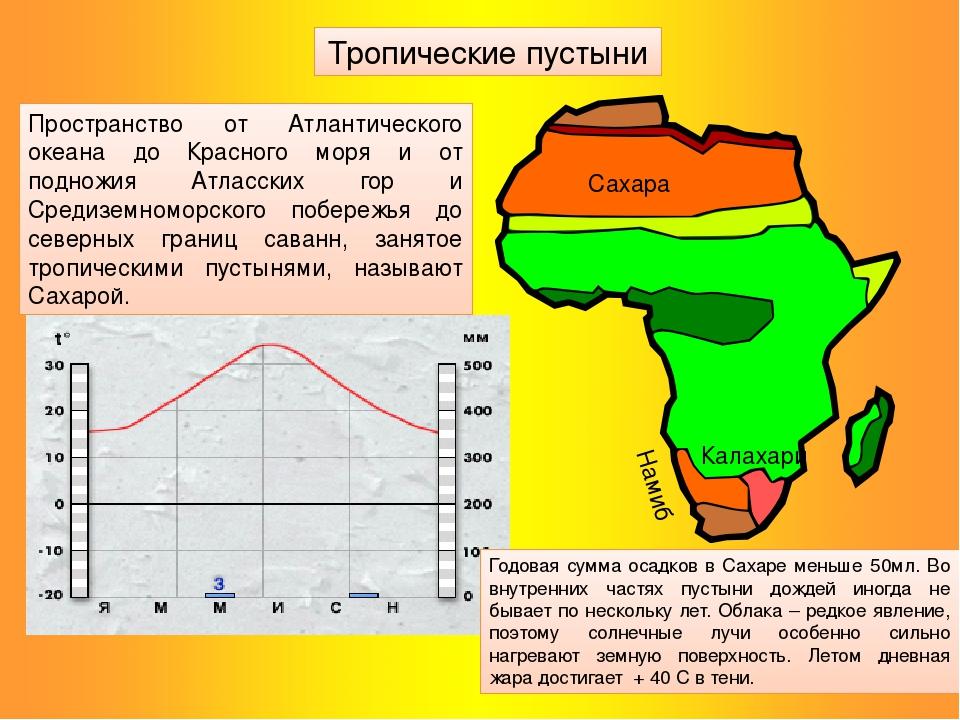 Сахара Калахари Намиб Тропические пустыни Годовая сумма осадков в Сахаре мень...