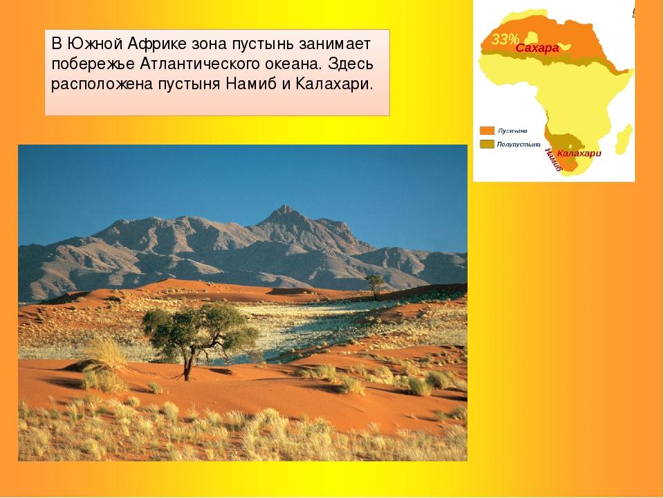 В Южной Африке зона пустынь занимает побережье Атлантического океана. Здесь р...