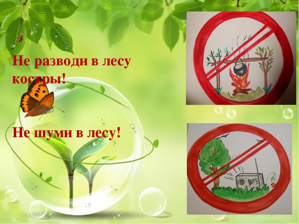 Картинки знака не шуметь в лесу