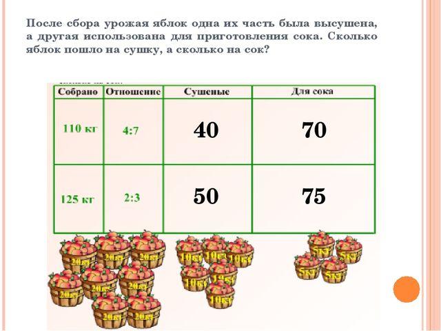 тема деление в данном отношении 6 класс