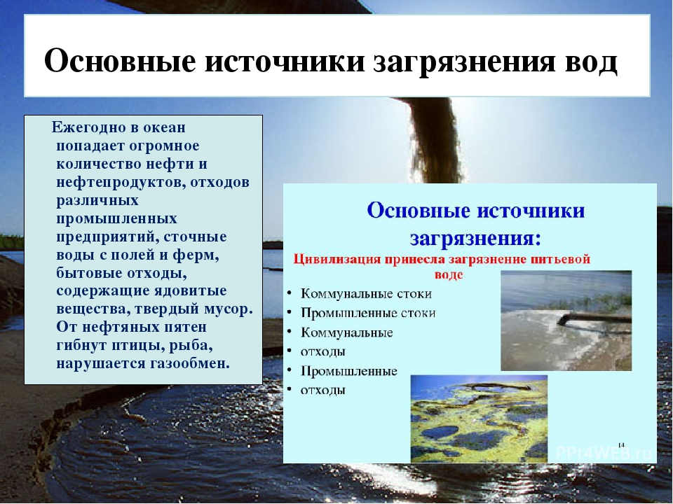 Последствия загрязнения природных вод шпаргалка по лбж