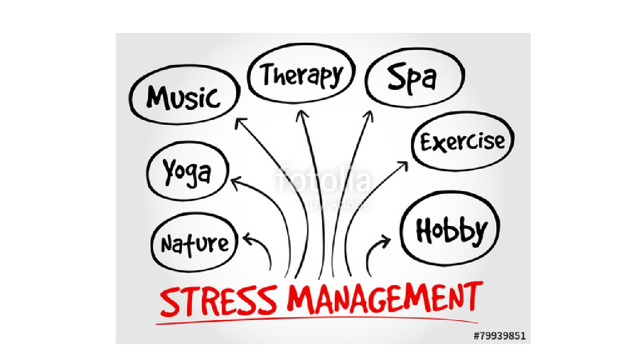 in level management stress thesis Graduate student stress management page 14 the stress level of graduate  thesis submission key themes: stress level  graduate student stress management page 31.