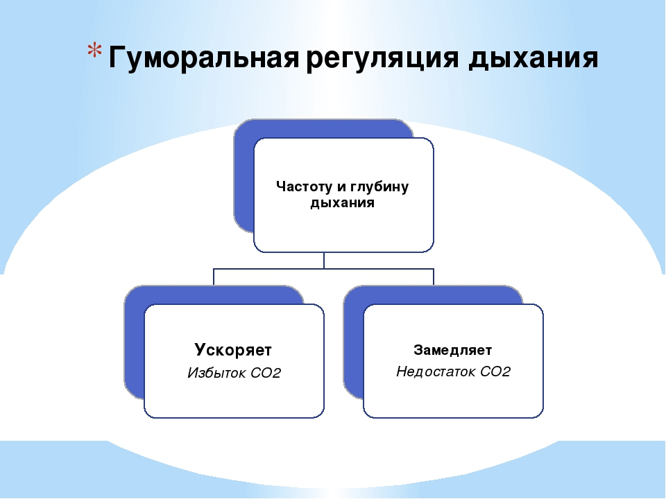Гуморальная регуляция дыхания Частоту и глубину дыхания Ускоряет Избыток СО2...