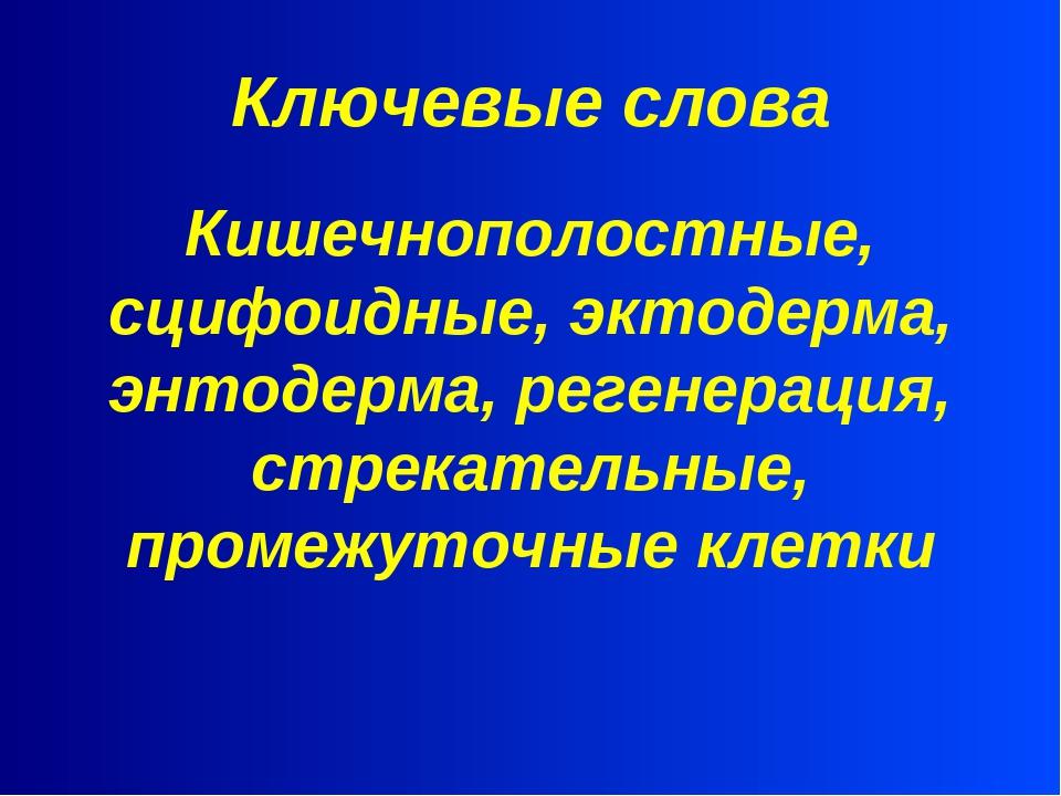Ключевые слова Кишечнополостные, сцифоидные, эктодерма, энтодерма, регенераци...