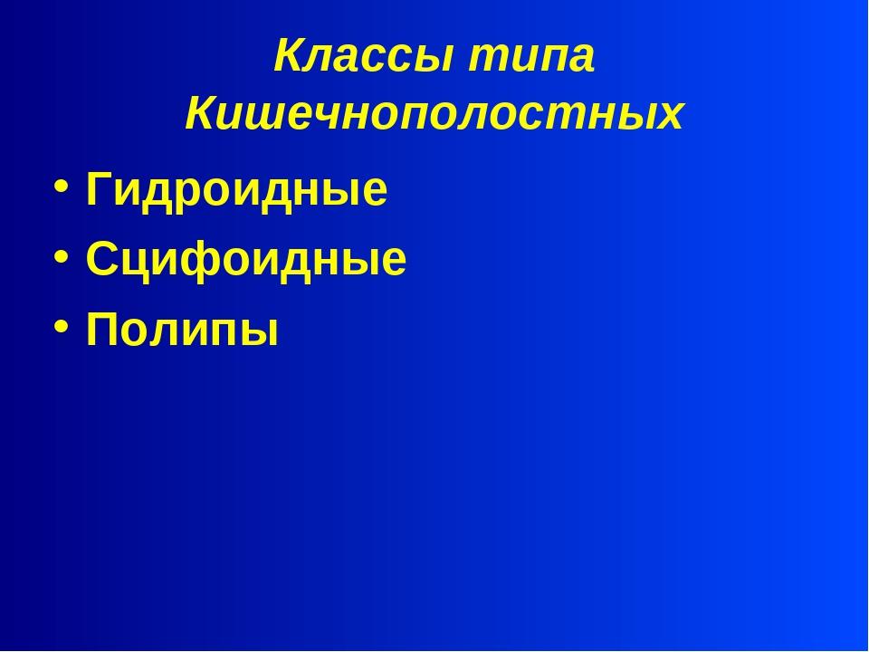 Классы типа Кишечнополостных Гидроидные Сцифоидные Полипы
