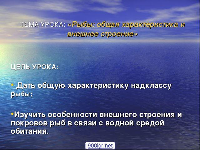 ПРЕЗЕНТАЦИЯ 7 КЛАСС БИОЛОГИЯ ТИП ХОРДОВЫЕ РЫБЫ СКАЧАТЬ БЕСПЛАТНО