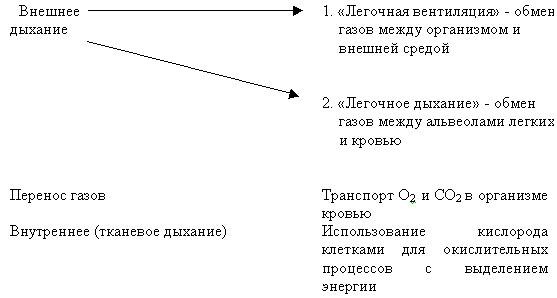 hello_html_m7adae562.jpg