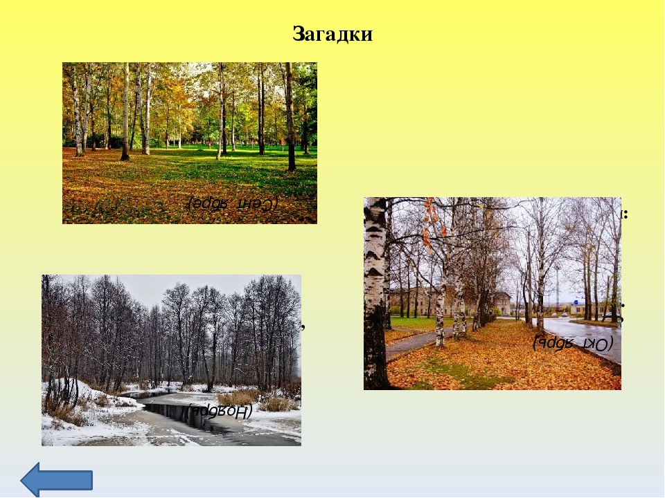 Осенние изменения в неживой природе Стало ночью холодать, Стали лужи замерзат...
