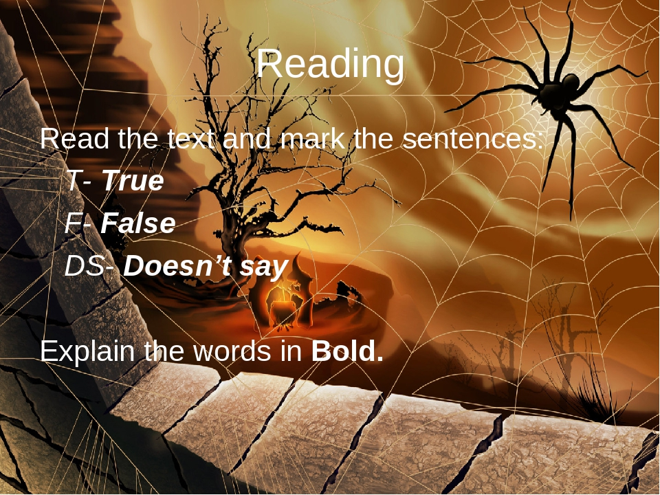 Reading Read the text and mark the sentences: 	T- True 	F- False 	DS- Doesn't...