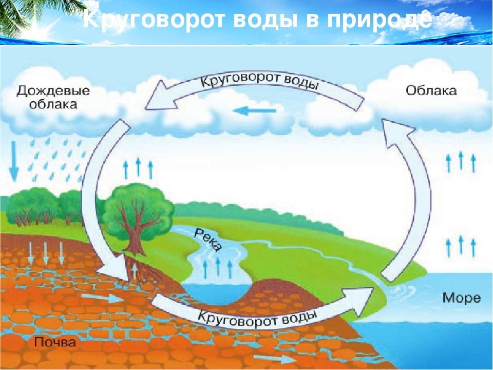 Картинка круговорот воды в природе для школьников, переписки