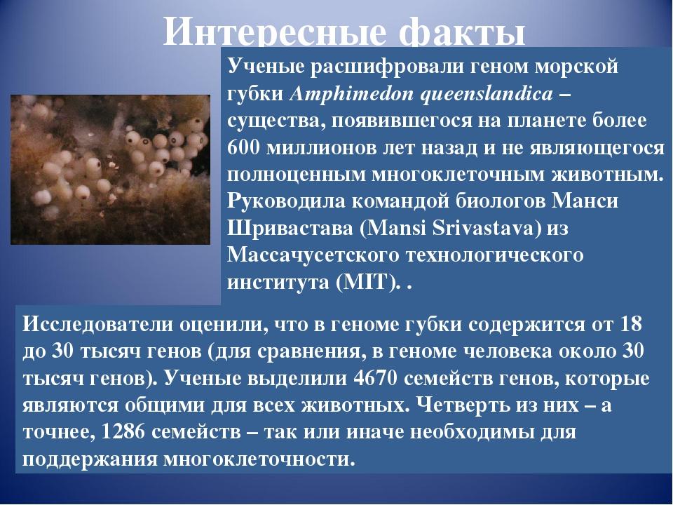 интернет-магазин интересные факты про биологию с фото отличие альбиносов