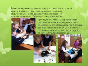 В рамках изучения русского языка и математики в 1 классе дети подготовили нес