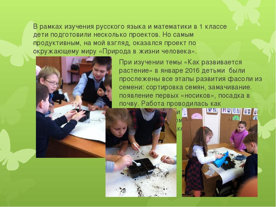 В рамках изучения русского языка и математики в 1 классе дети подготовили нес...