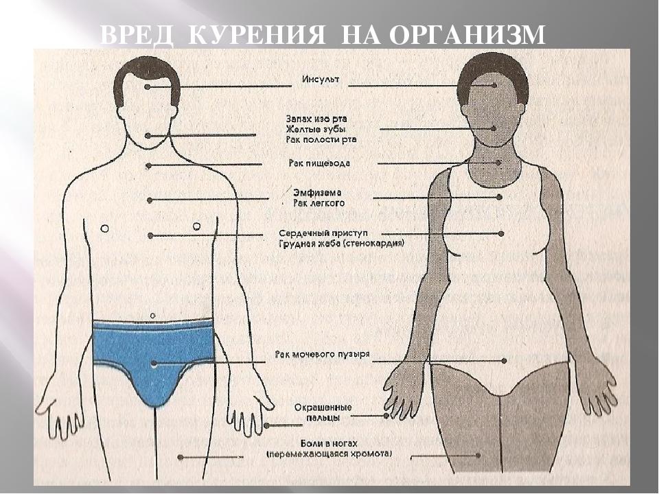 Как влияют на организм вейпы