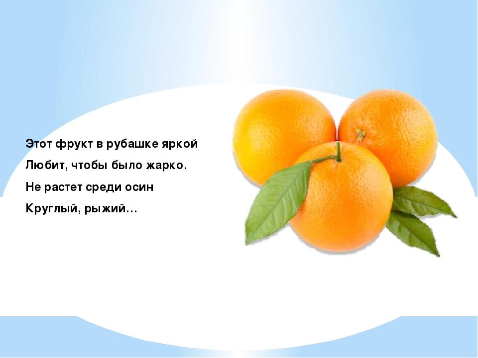 сентябрь загадки про апельсин с картинками убирает