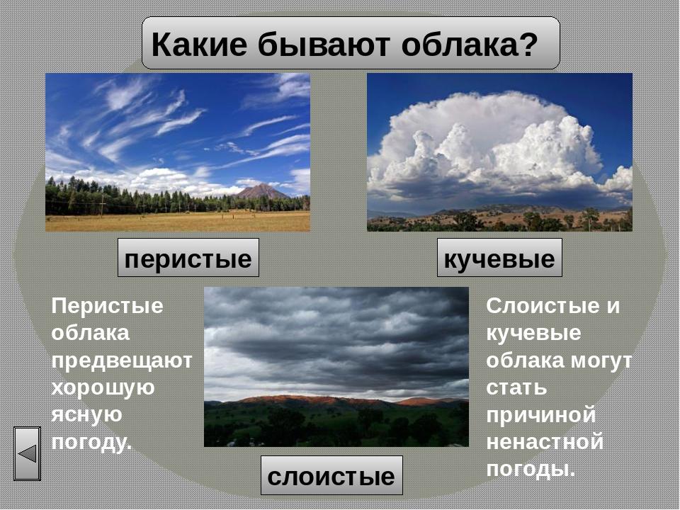 колдуна высокого облака какие бывают с картинками годы своего существования