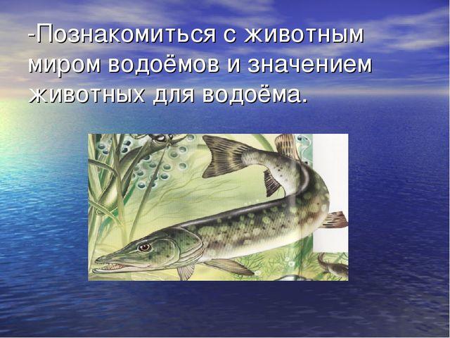 знакомство с обитателями водоёмов ставропольского края