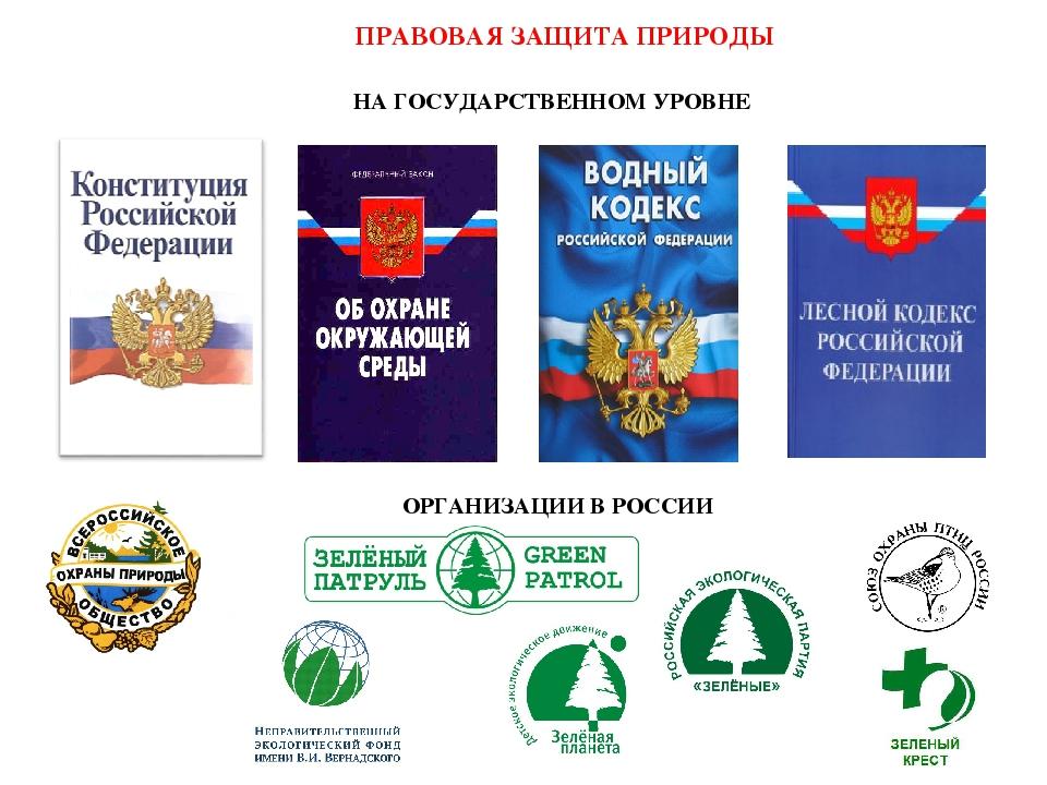 ПРАВОВАЯ ЗАЩИТА ПРИРОДЫ НА ГОСУДАРСТВЕННОМ УРОВНЕ ОРГАНИЗАЦИИ В РОССИИ