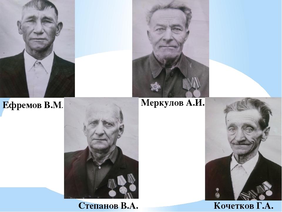 Ефремов В.М. Меркулов А.И. Степанов В.А. Кочетков Г.А.