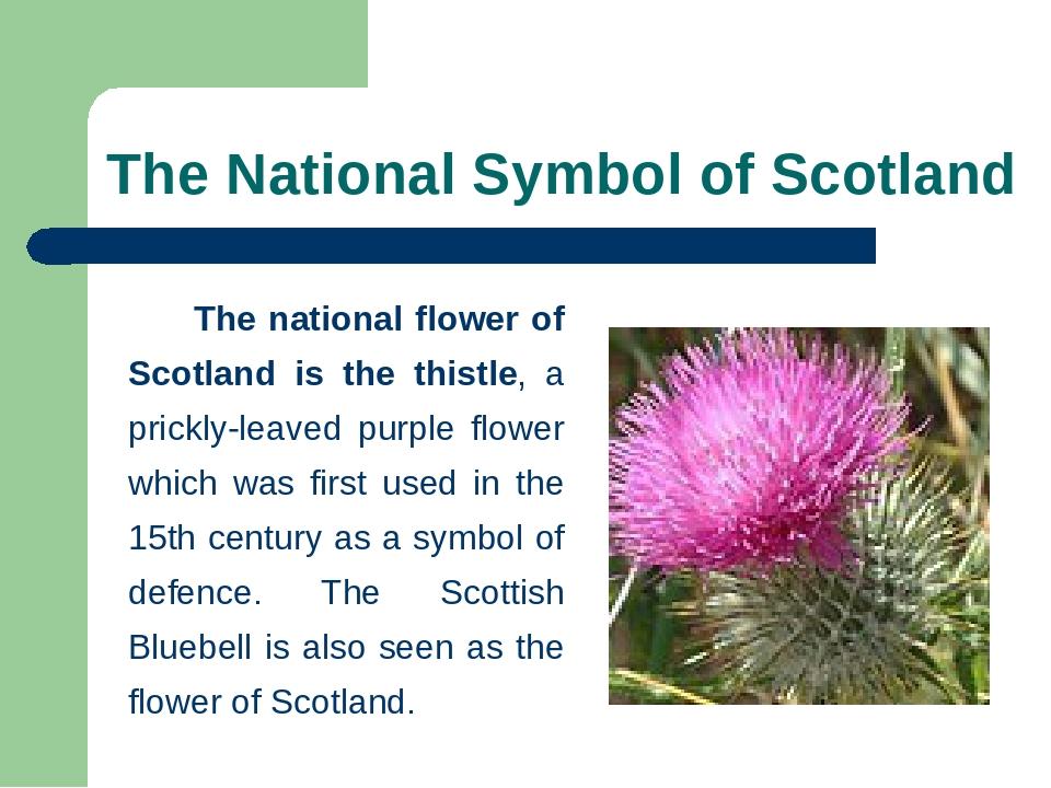 National Symbols Of Scotland Wikipedia Dinocrofo