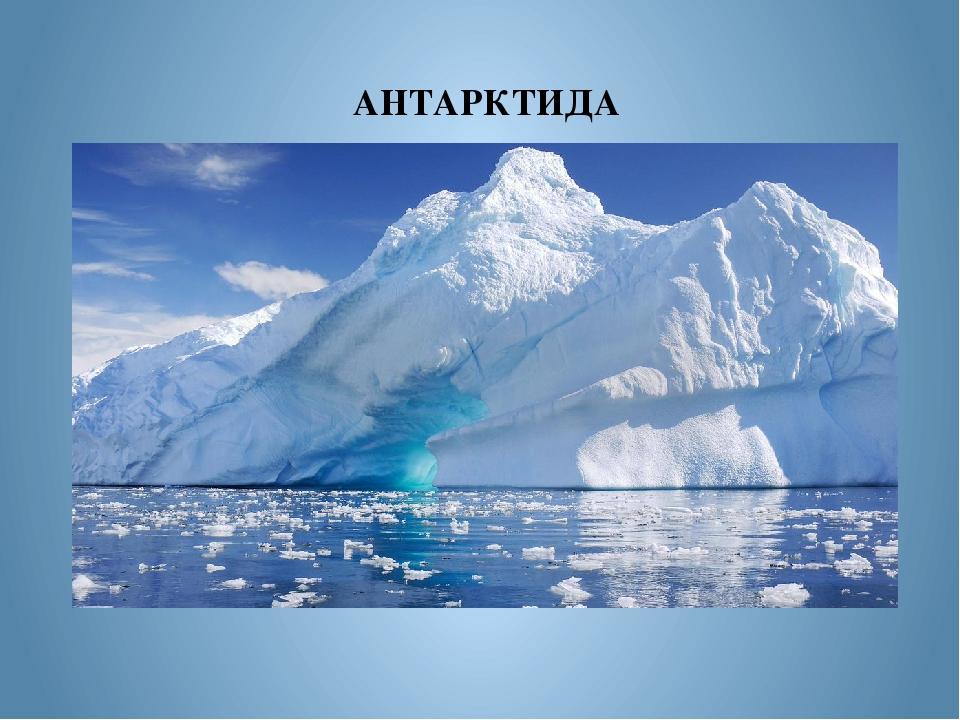 картинка с надписью антарктида очень гармоничная личность