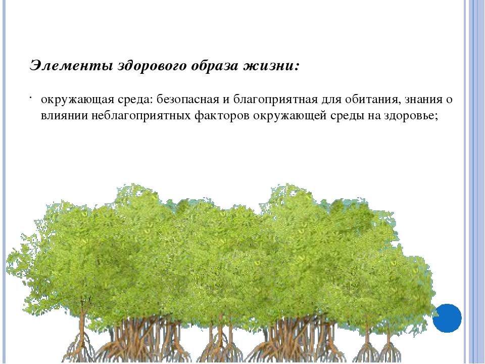 Элементы здорового образа жизни: окружающая среда: безопасная и благоприятная...