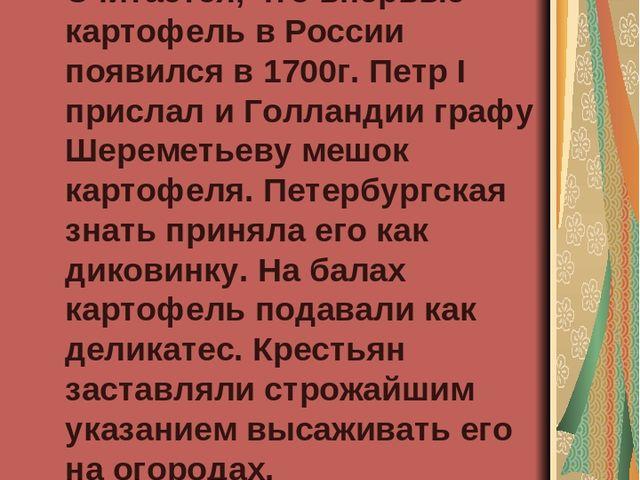 Появление картофеля в России Считается, что впервые картофель в России появи...
