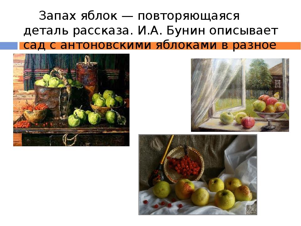 Запах яблок — повторяющаяся деталь рассказа. И.А. Бунин описывает сад с анто...
