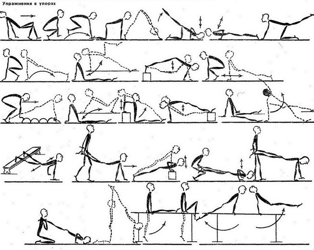 комплекс упражнения на скамейке картинки