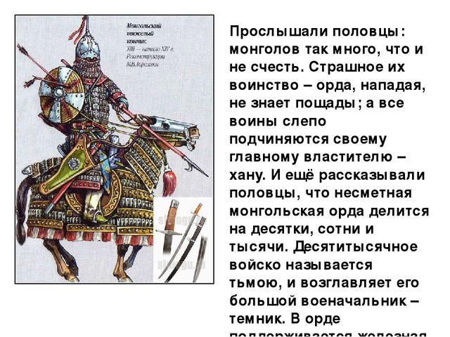 Презентация На Тему Половцы