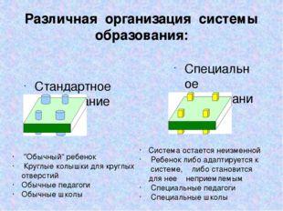 Различная организация системы образования: Стандартное образование Специально