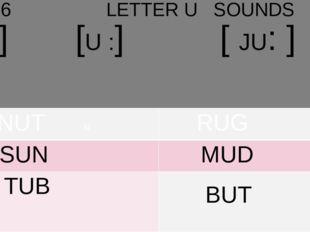 UNIT 6 LETTER U SOUNDS [ [[[]]] ]]]]]] ] [U :] [ JU: ] NUTN RUG SUN MUD TUB BUT