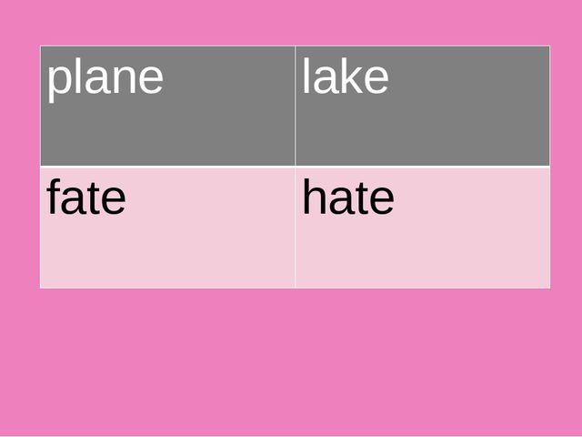 plane lake fate hate