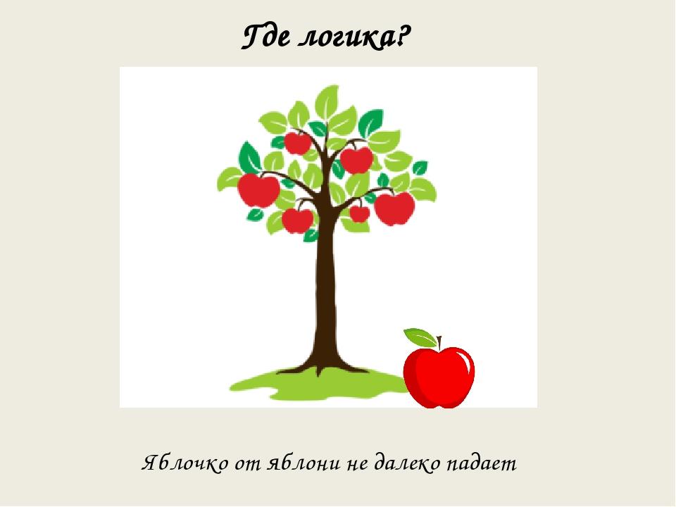 Картинка яблоня от яблони упало недалеко