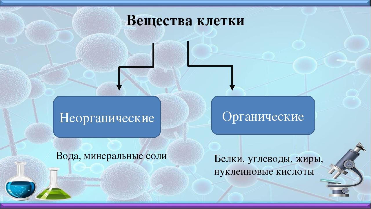 Картинки неорганические вещества клетки