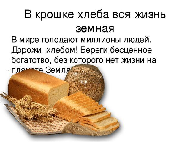 Стихи хлебные крошки
