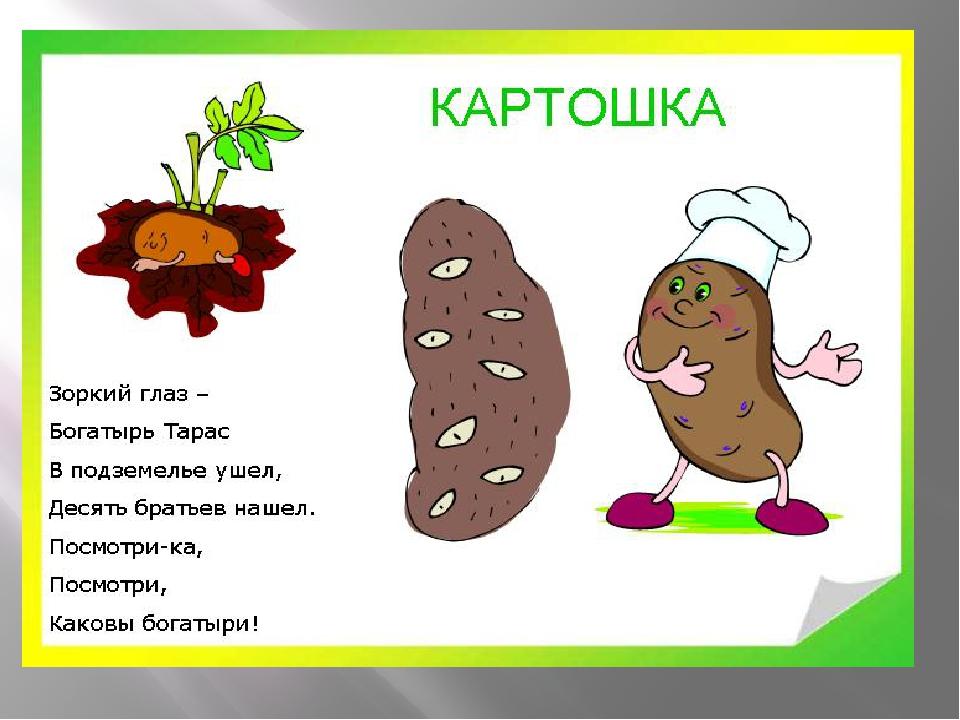 Открытка про картошку 92