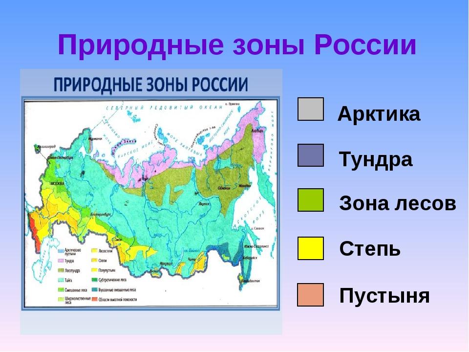 Тест по разделу природные зоны россии 4 класс