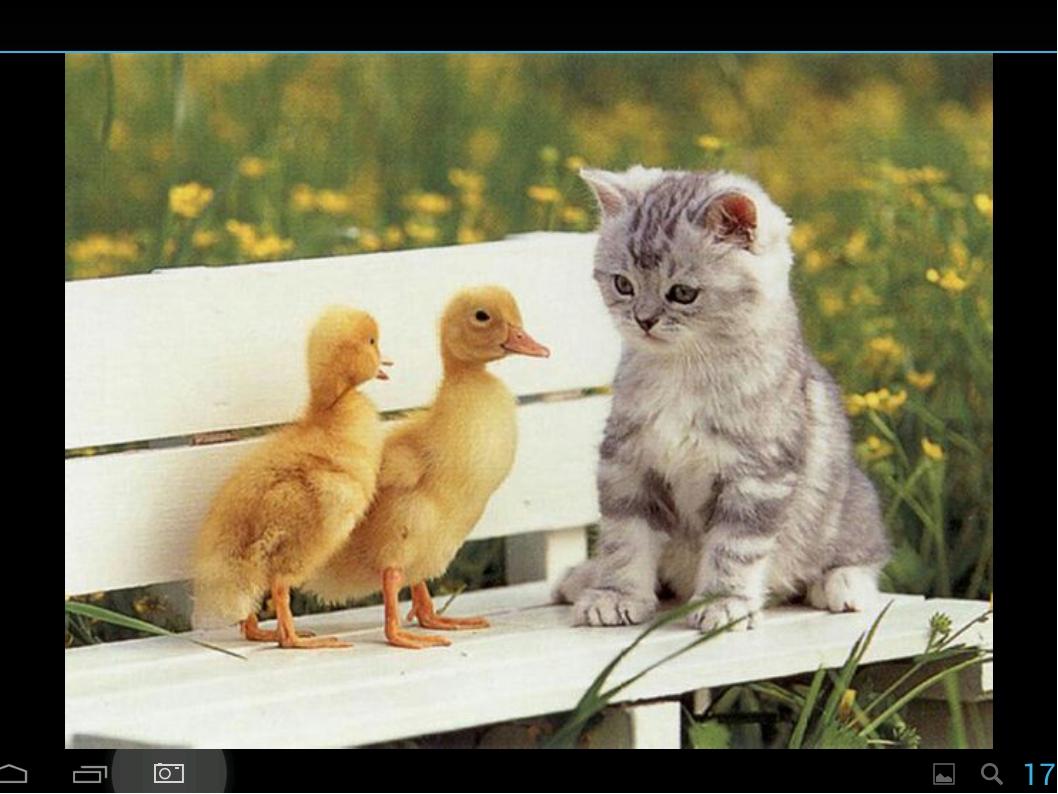 Прикольные картинки про по дружбе