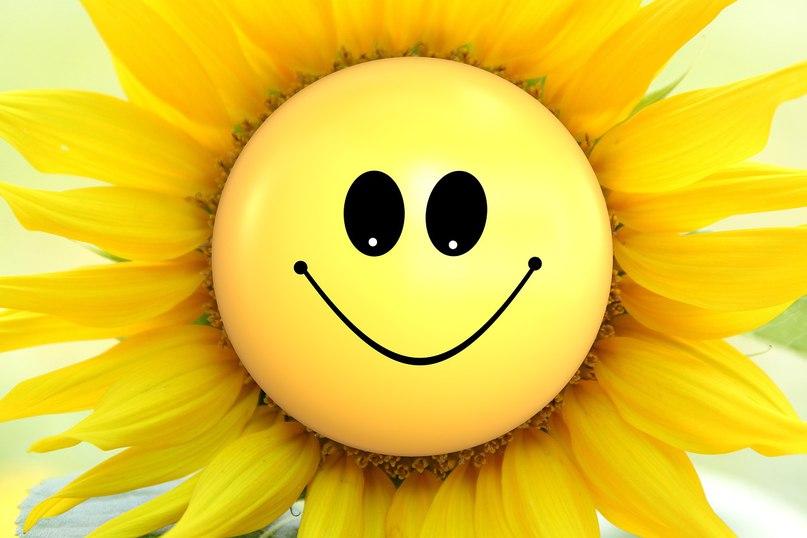 Картинки улыбка прикольная