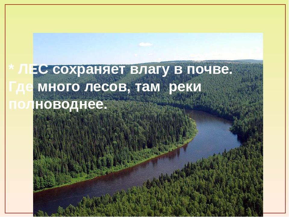 * ЛЕС сохраняет влагу в почве. Где много лесов, там реки полноводнее.