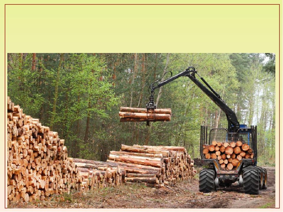 *ЛЕС даёт ценный строительный материал, топливо, грибы и ягоды, полезные рас...
