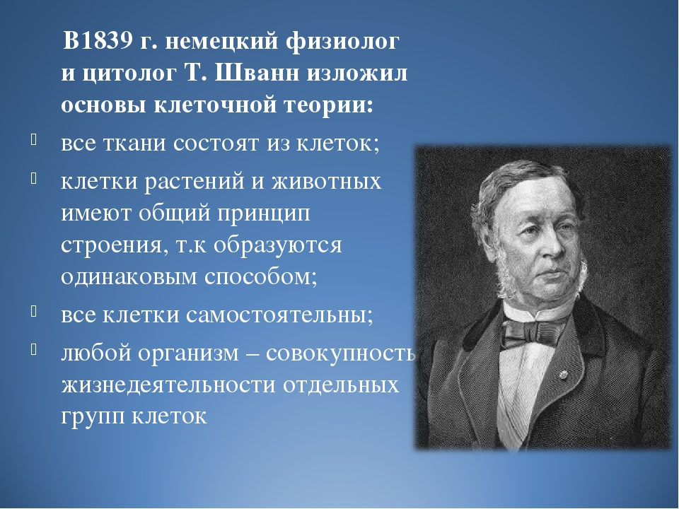 В1839 г. немецкий физиолог и цитолог Т. Шванн изложил основы клеточной теори...