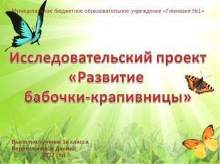 Муниципальное бюджетное образовательное учреждение «Гимназия №1» Выполнил уче