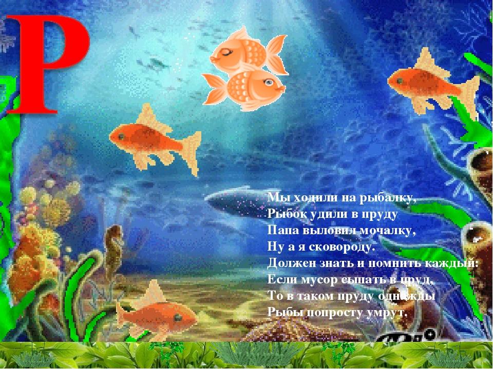 Популярные, анимация картинки с рыбками